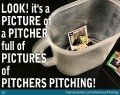 pitcher-vs-picture_o_2722303